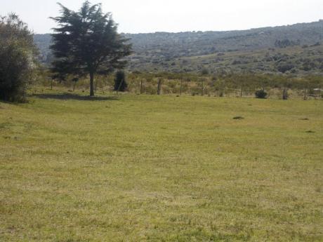 Campo / Chacra En Venta En Aiguá, Lavalleja