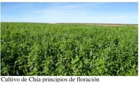 Campo / Chacra En Venta En Treinta Y Tres, Treinta Y Tres