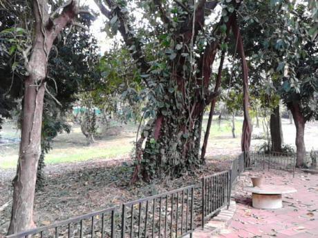 Oferta Vendo Quinta Con Dos Casas En Un Terreno De 14.860 Mt2 Sobre Ruta- Luque Aregua