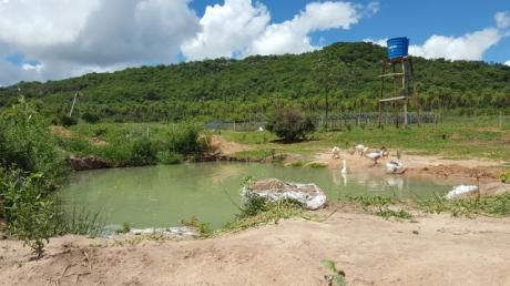 Hermoso Cerro De 5 Has - Piribebuy