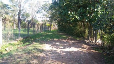 Villa Adela - Luque - Terreno De 1600 M2