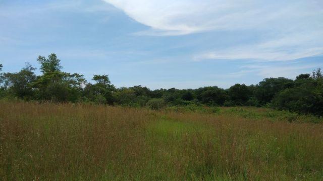Terreno 13000 M2 - Capiatá - A 4 Kilómetros De Ruta 2 Km 24 - Linda Con Arroyo
