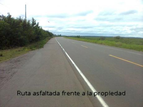 !!!vendo Granja De 22.5 Htas. - Zona Santani!!! 225 M. S/ Ruta Asfaltada...