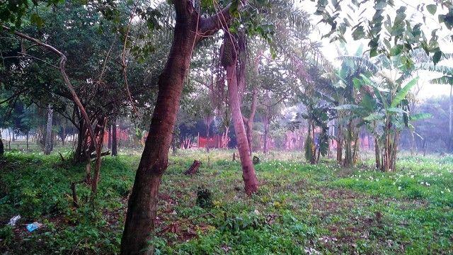 Vendo 6.100 M2 Terreno En Ypane- Centro-cocue