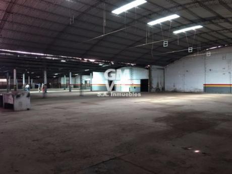 Alquilo Tinglado/deposito De 3.000 M2 En Fernando De La Mora