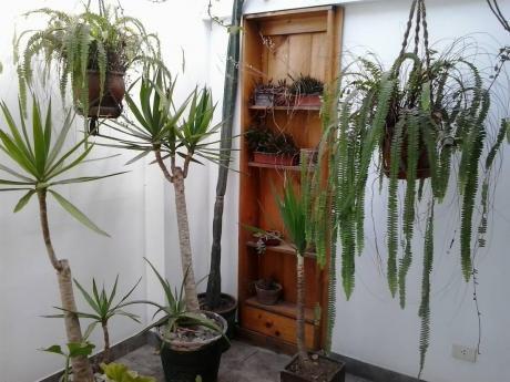 ¡precio Rebajado! Duplex Cerca A Parque Tradiciones - Miraflores