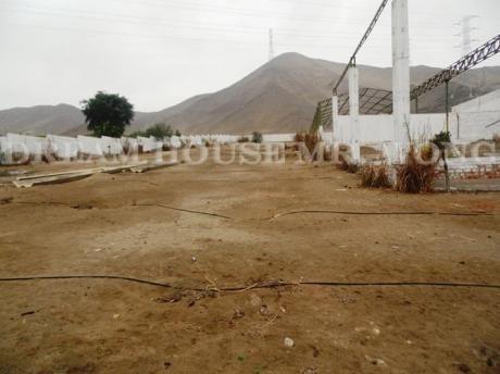 Venta De Dos Terrenos Continuos En Chilca - Cañete