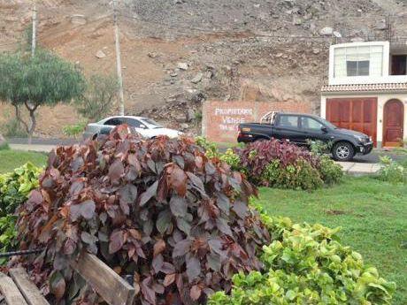 Vendo Terreno Calle Río Lena 221 Urb. Las Praderas De La Molina, La Molina