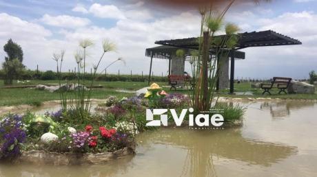 Residencial Villa Flavia - Ahorra Para El Futuro
