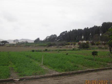 Vendo Terreno Agricola En Chancayllo Alt. Km. 93 Panamericana Norte