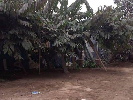 Terreno Rustico, Ideal Para Industria O Vivienda - Us$524,000