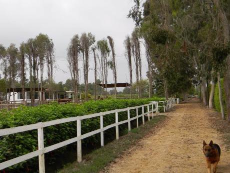 Casa De Campo Y Playa 2x1en Km 86 Totoritas Mala - Lindisima