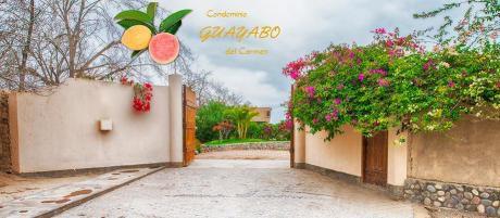 Lotes Para Casa De Campo En Zona Exclusiva - El Carmen, Chincha