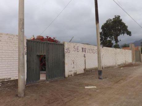 Terreno Agrícola/ Industrial - Zona Papa León, Chilca