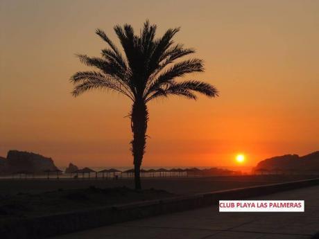 Playa Las Palmeras Excelente Vista Al Mar – Casa En Alquiler Us$5,000 X Mes