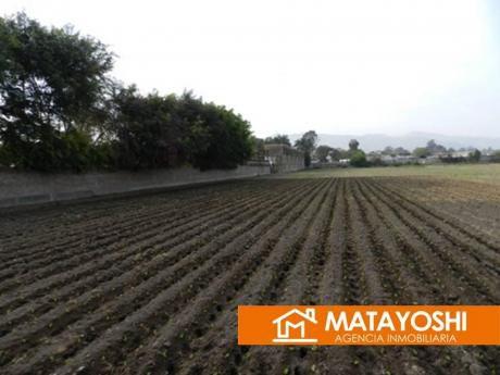 Vendo Terreno En Pachacamac Lurín