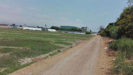 Vendo Terreno Industrial En Lurin De 5000 M2 Inscrito En Sunarp
