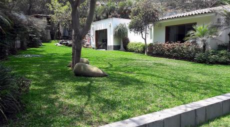 Casa En Venta La Molina - Urb La Planicie - Calle El Refugio