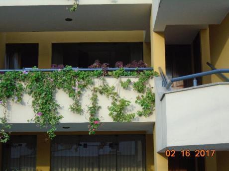 Venta De Acogedor Departamento En Calle Toquepala - Surco