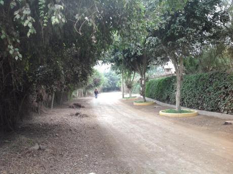 Pachacamac - San Fernando
