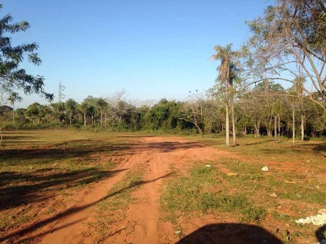 6 Terrenos Juntos En Luque Zona Ips