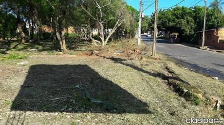Vendo Terreno Sobre Asfalto En Luque Palma Loma.