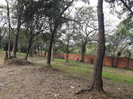 San Antonio Y Villa Elisa,terrenos A 3 Cuadras De Von Polesky Y Paso Medin.