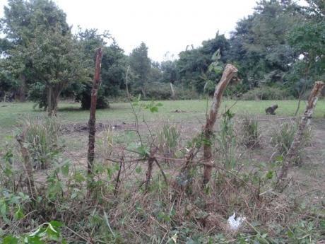 Vendo Terreno En Ciudad De Ypane