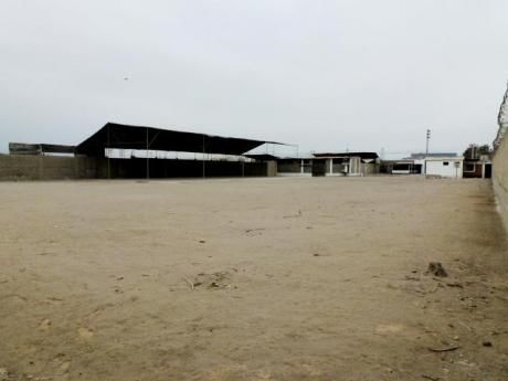 Alquiler Local Industrial En Lurin 5,000 M2 - $1.45 X M2 Inc. Impuestos