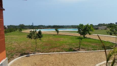 Terreno Asia Del Campo