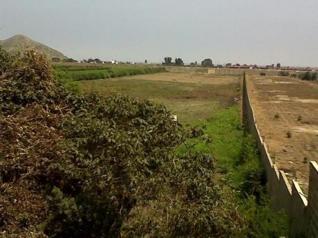 Mala - Bujama, Venta De Terreno 25,865 M2