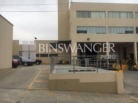 Alquiler De Local Industrial Desde 1,000 M2 - Lurín