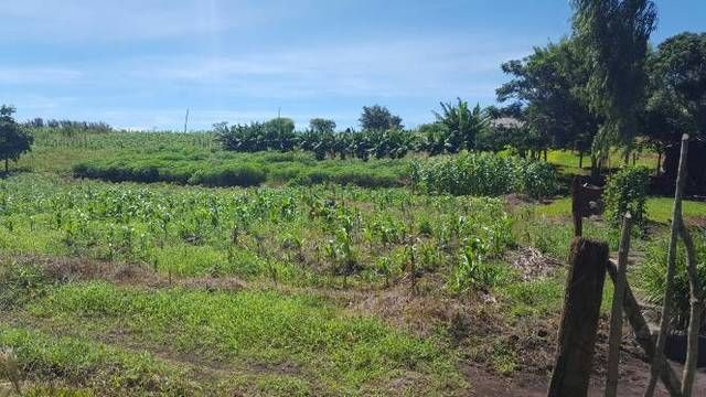 Vendo Terreno En Km. 25 Minga Guazu (lado Acaray)