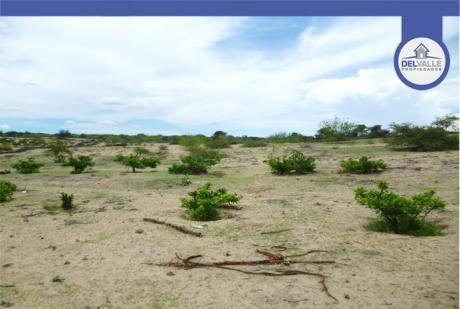 Venta De Terreno Agrícola En Piura - 120 Has