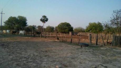 Remató 74 Hectárea En Toro Pampa Chaco. Precio Conversable