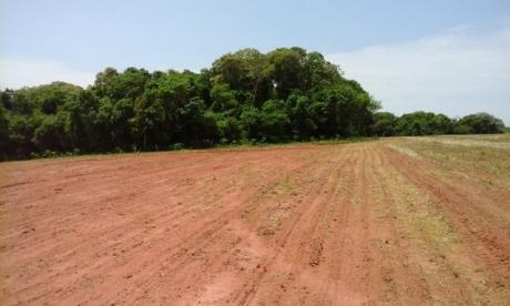 Caaguazu Vendo Una Propiedad De 200has, Sobre Ruta 13