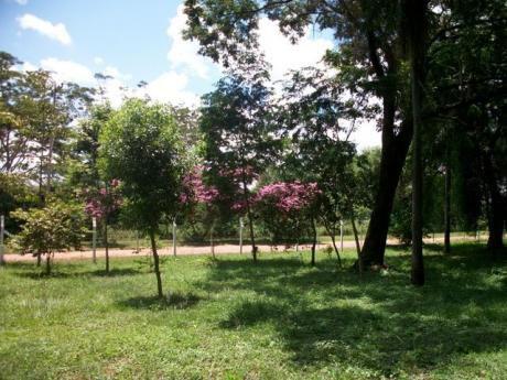Atencion Cerristas Vendo Terreno En El Parque Azulgrana!!!!!!! Ypane