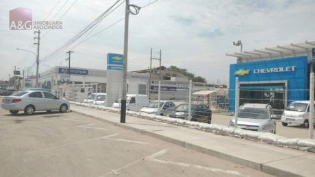 Vendo Terreno En Piura Zona Comercial Fte A Oechsle Real Plaza 292