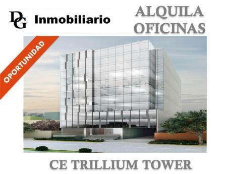 Alquiler Oficina Implementada 83 M2 Ce Trillium Tower - San Isidro