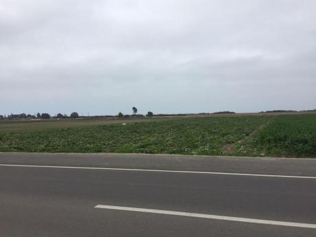 Excelente Terreno En Venta En Chincha Baja, Grifo, Almacen, Playa, Comercio
