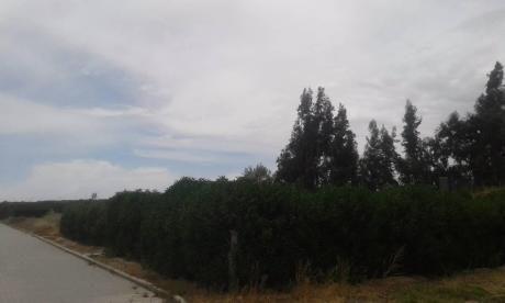 Vendo Terreno En Urbanización San Agustín - Sachaca