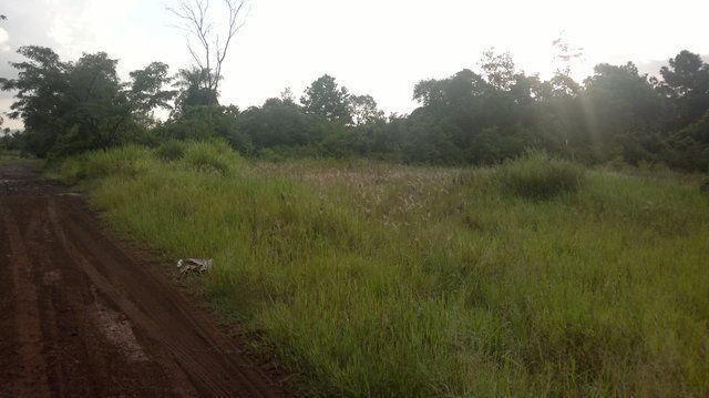 Vendo Hermoso Terreno De 2 Has. En San Juan I