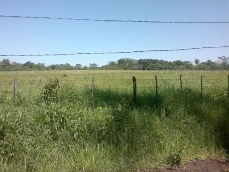 Vendo Terreno De 10.000 M2 En San Juan Del Parana