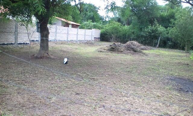 En La Ciudad De Limpio Vendo Terreno A 1 Cuadra Del Asfalto.