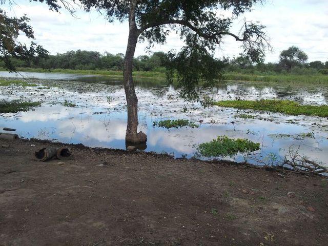 Estancia En Pozo Hondo 8.600 Ha