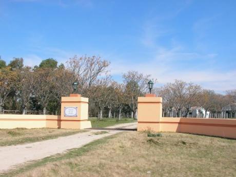 Oportunidad 247 Hs Agrícola Ganadero A 75 Km Del Puente