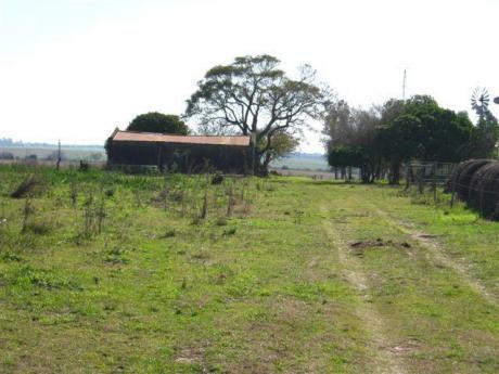 Campo Agrícola/turístico, 70 Hectáreas, A 500 Metros Del Río De La Plata