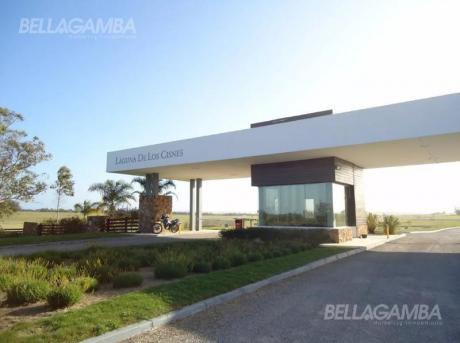 """""""chacra En Venta, Laguna De Los Cisnes, Uruguay"""""""