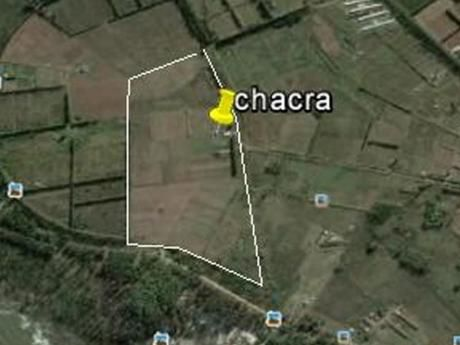 Chacra Punta Espinillo 12hec, Horticultura Excelente