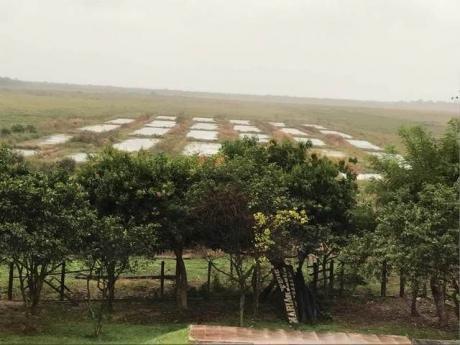 Casa Quinta En Arroyo & Esteros Con 32 Estanques Para Cria De Alevines.